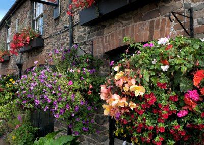 Flowers outside The Ship Inn